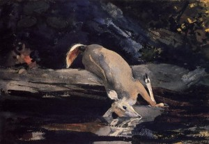 http://www.paintingall.com/images/P/Winslow-Homer-Fallen-Deer-Oil-Painting.jpg